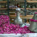 گلاب اصل نیاسر