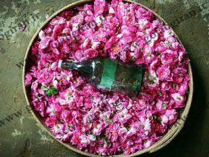 خرید و فروش گلاب شیراز