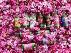 گلاب زهرا