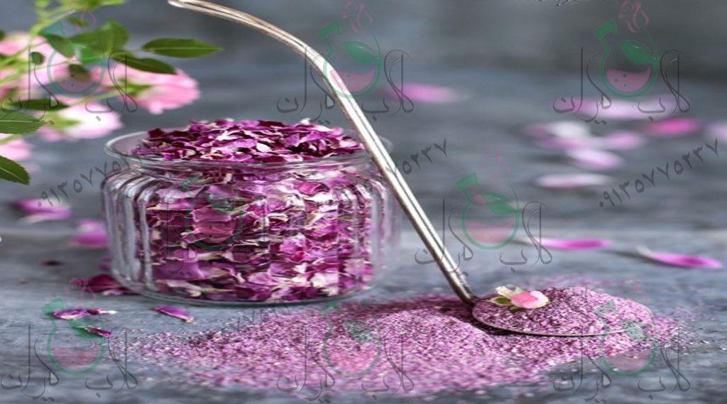 غنچه گل رز
